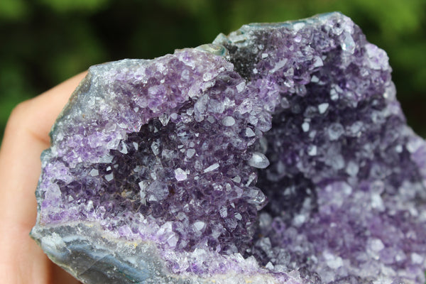 Amethyst Grotto Cluster-GratefulGemHead