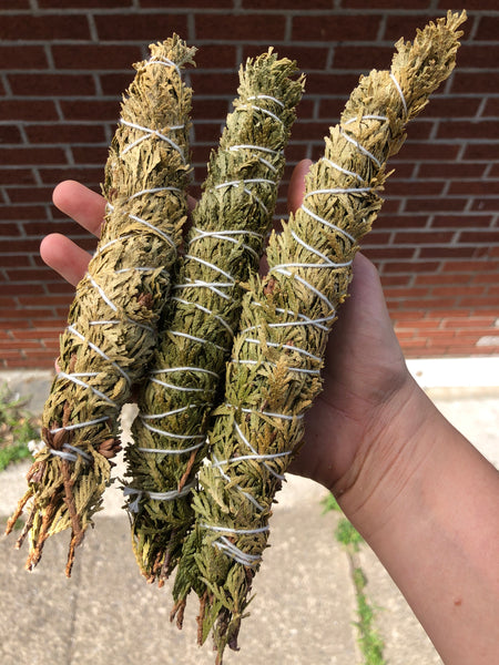 Wild Harvested Cedar bundle-GratefulGemHead