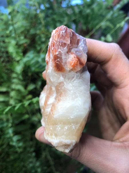 Red Banded Calcite-GratefulGemHead