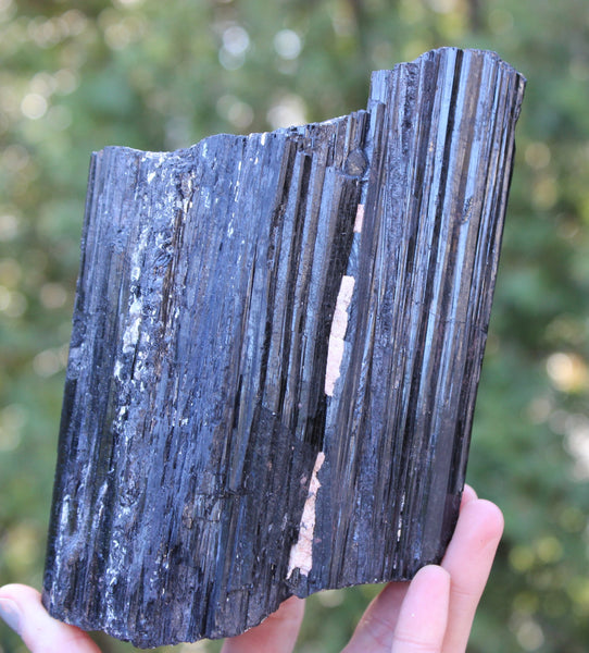 Black Tourmaline Standing Display Log-GratefulGemHead