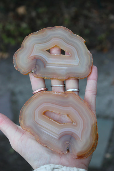 Brown Agate Slice Pair-GratefulGemHead