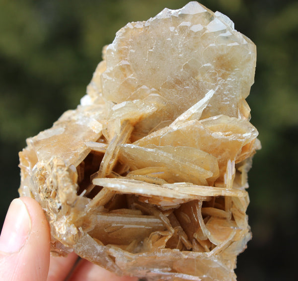 Bladed Barite Cluster-GratefulGemHead