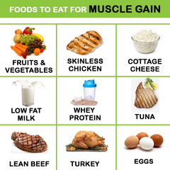 Foods For Muscle Gain | TeddyWinston.com