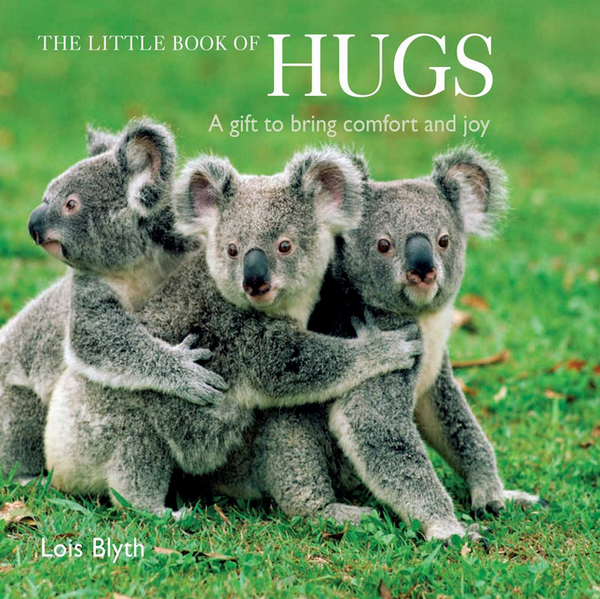 THE LITTLE BOOK OF HUGS by Lois Blyth