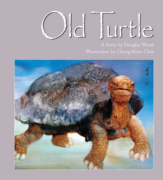 OLD TURTLE by Douglas Wood & illustrated by Cheng-Khee Chee