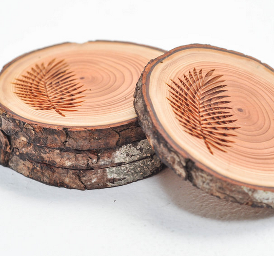 West Coasters Driftwood Coasters, FERN, Set of 4