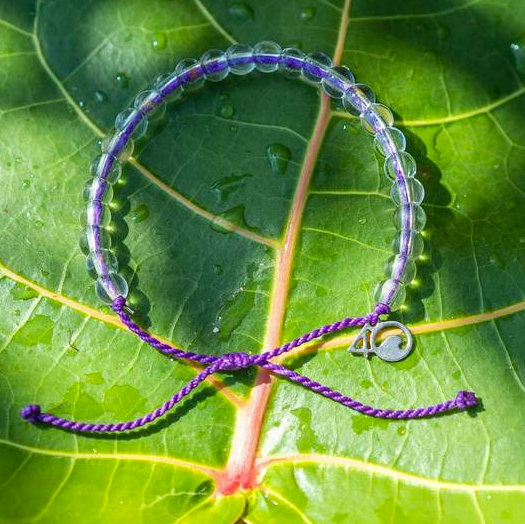 4ocean Hawaiian Monk Seal Bracelet (Limited Edition)