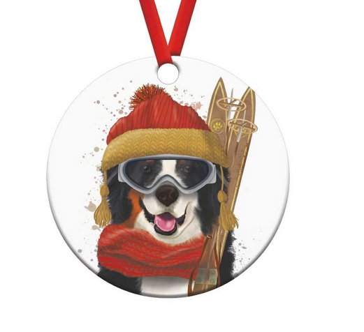 Skiing Noah Ornament