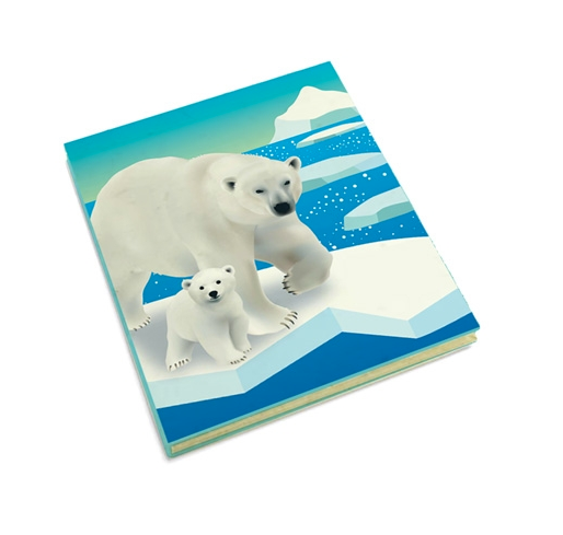 Journal - Polar Bears on Sea Ice