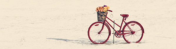 "Ernest Cadegan Photography ""Red Bike"""