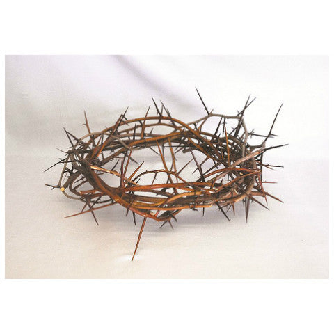 No. 2780 Crown of Thorns