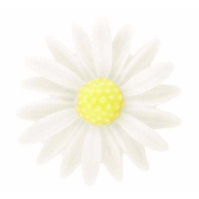 4 Pieces White And Yellow Daisy Resin Flower Cabochons - Bloomin Baubles