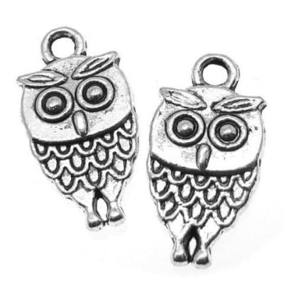 Antique Silver Double-Sided Wise Owl Charm at BaublesOfFun.com