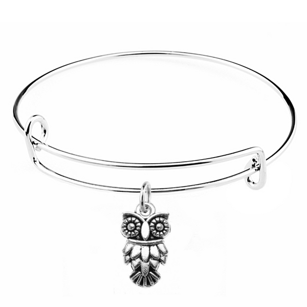 silver owl charm on bangle bracelet at Baubles Of Fun