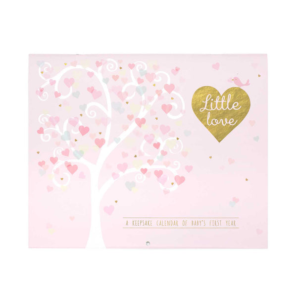 Little Love baby girl first year calendar