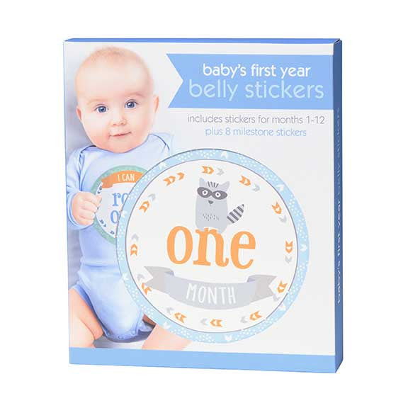 baby boy first year belly stickers