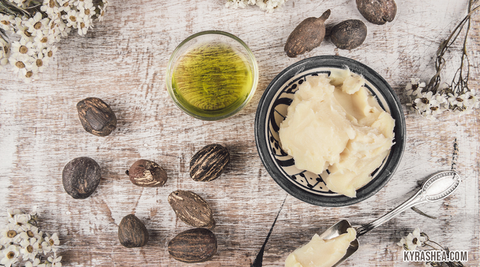 Shea Nut Oil Benefits for Skin & Hair