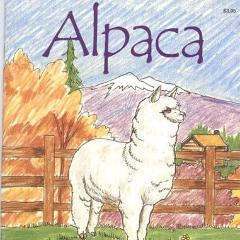 Alpaca Activity Book