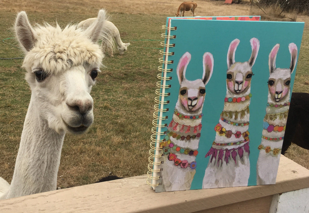 Boho Llamas XL Spiral Notebook