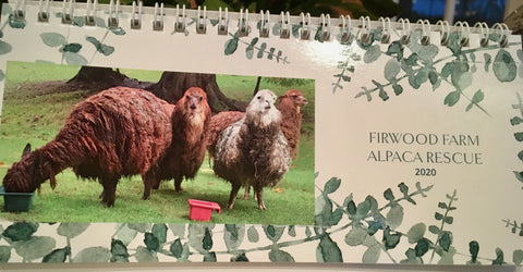 2020 Alpaca Rescue Desk Calendar