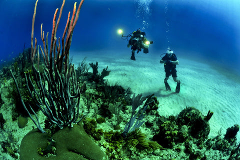 Biodegradable Sunscreen | Scuba Divers in Coral Reef