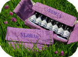 Wallet Set of Verbeia Essences