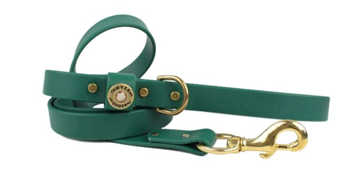Waterproof Dog Leash - Alpine Green