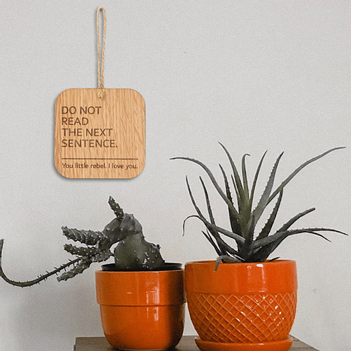 Funny wooden hanging sign