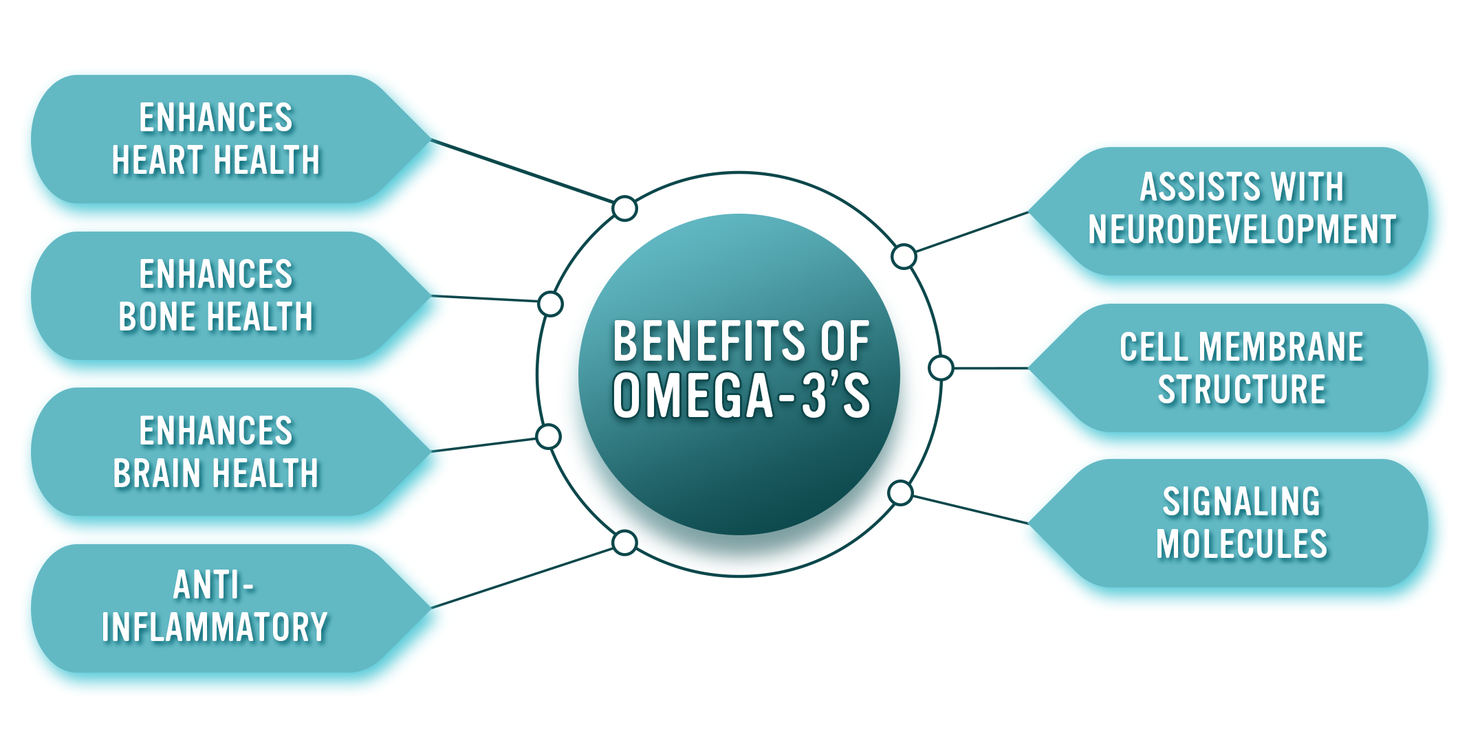 Benefits of Omega-3's