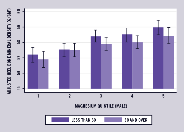 Magnesium and Bone Mineral Density Study Graph 1