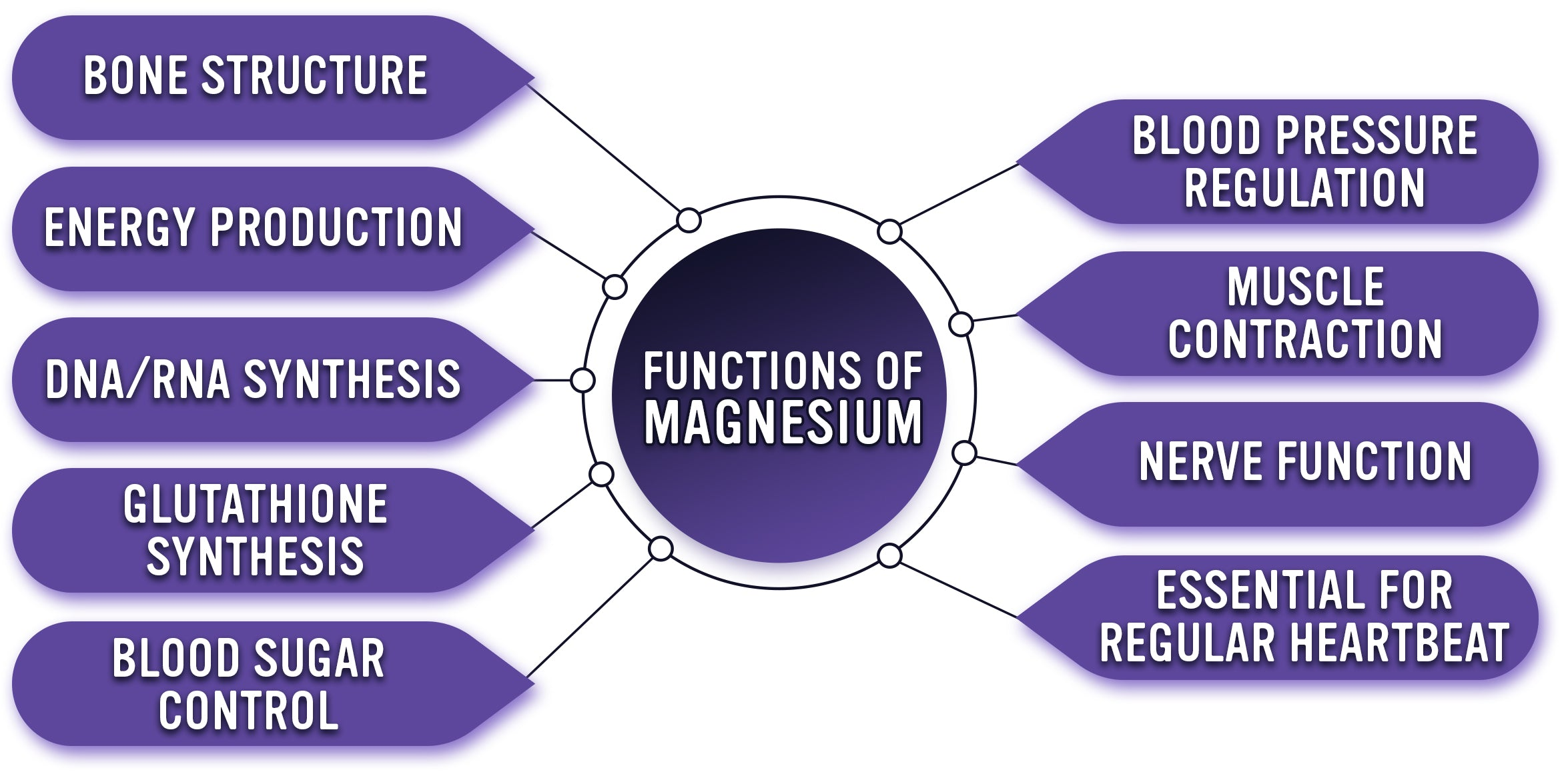 Functions of Magnesium