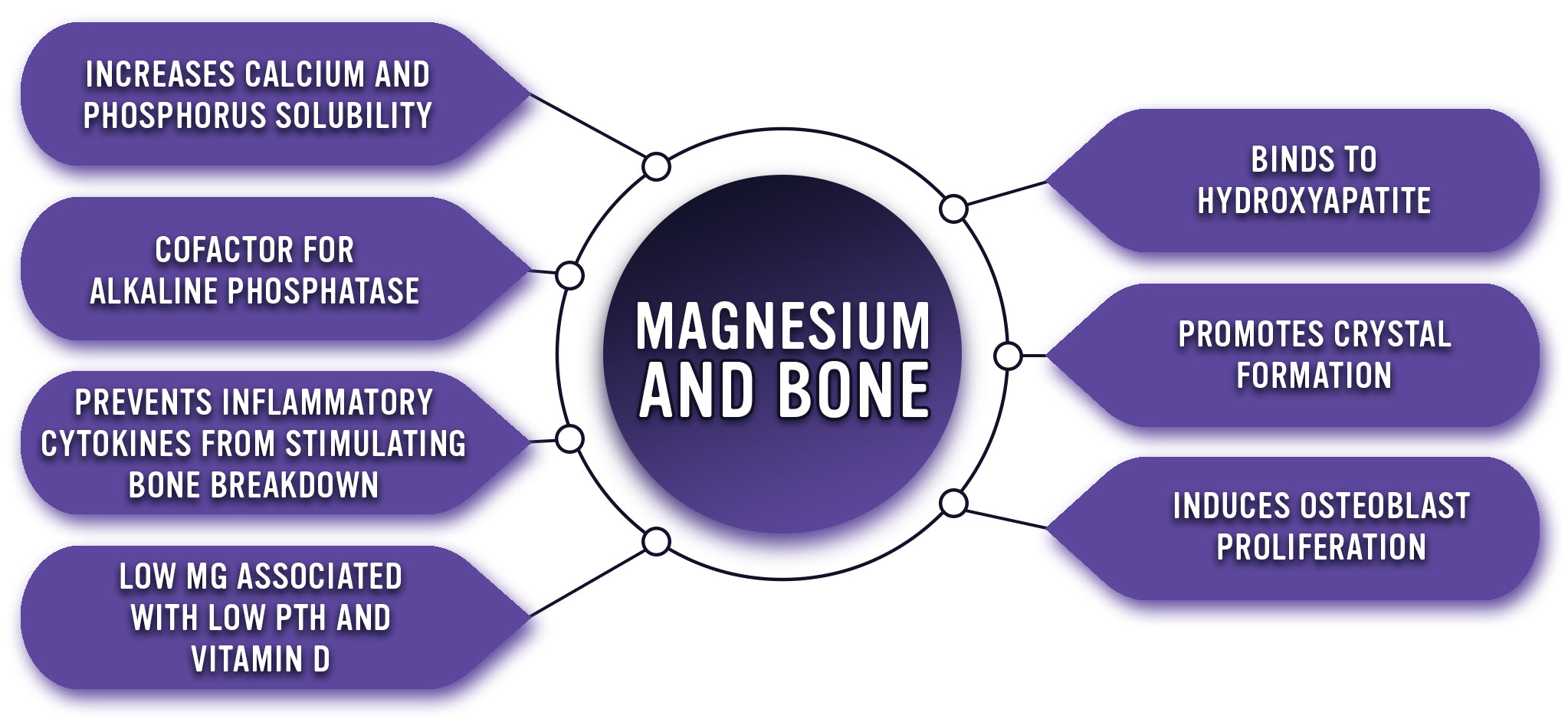 Magnesium and Bone