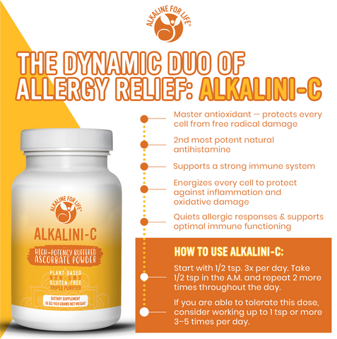 Natural Allergy Relief Kit