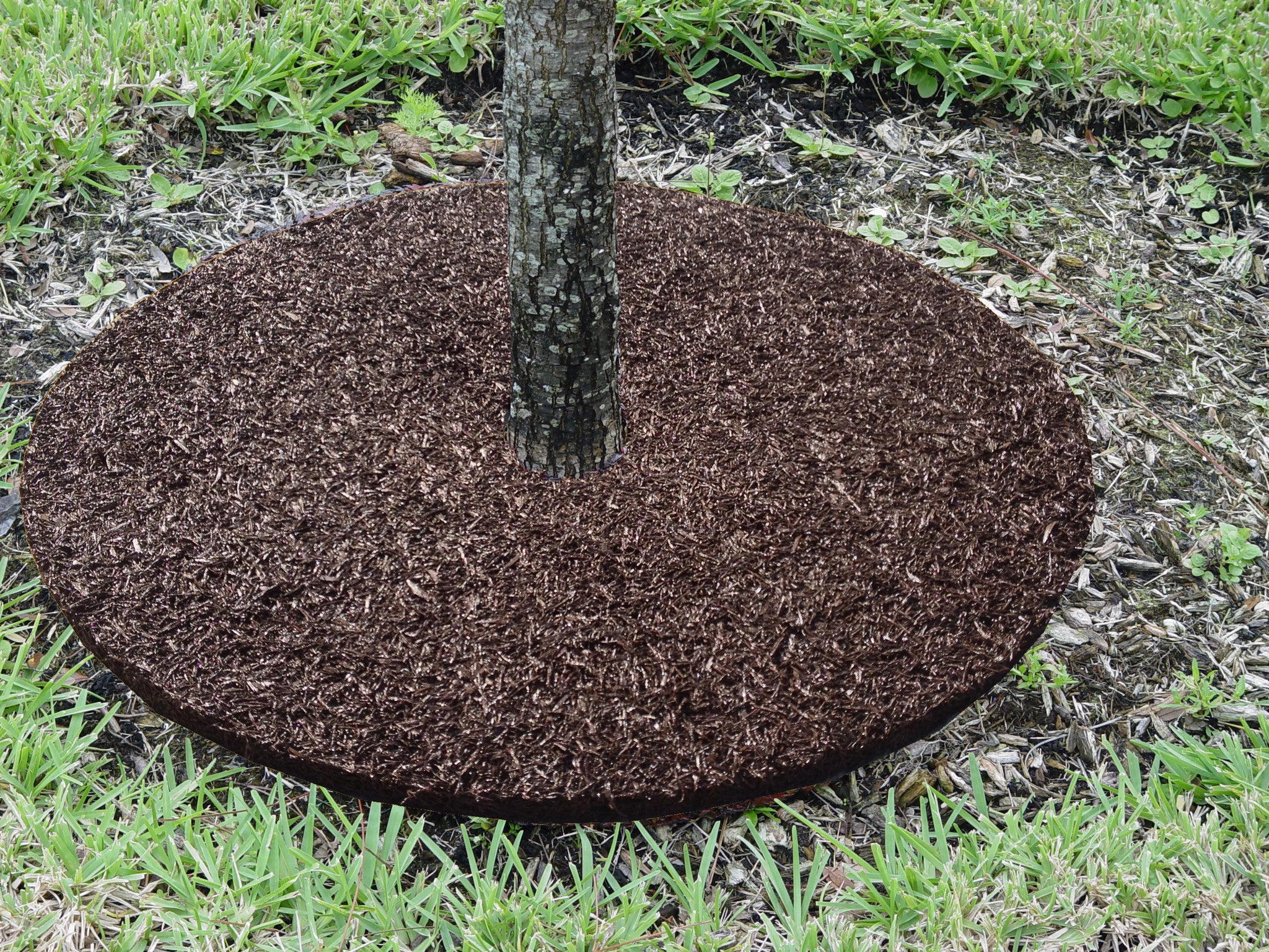 rubber designs rubber buffing tree rings - Mulch Designs