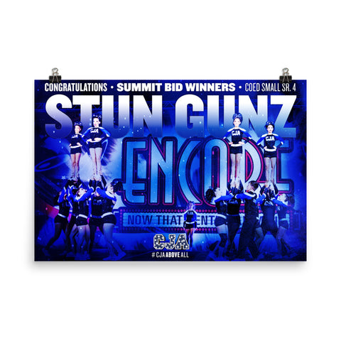 2017-18 Stun Gunz Summit Bid Poster
