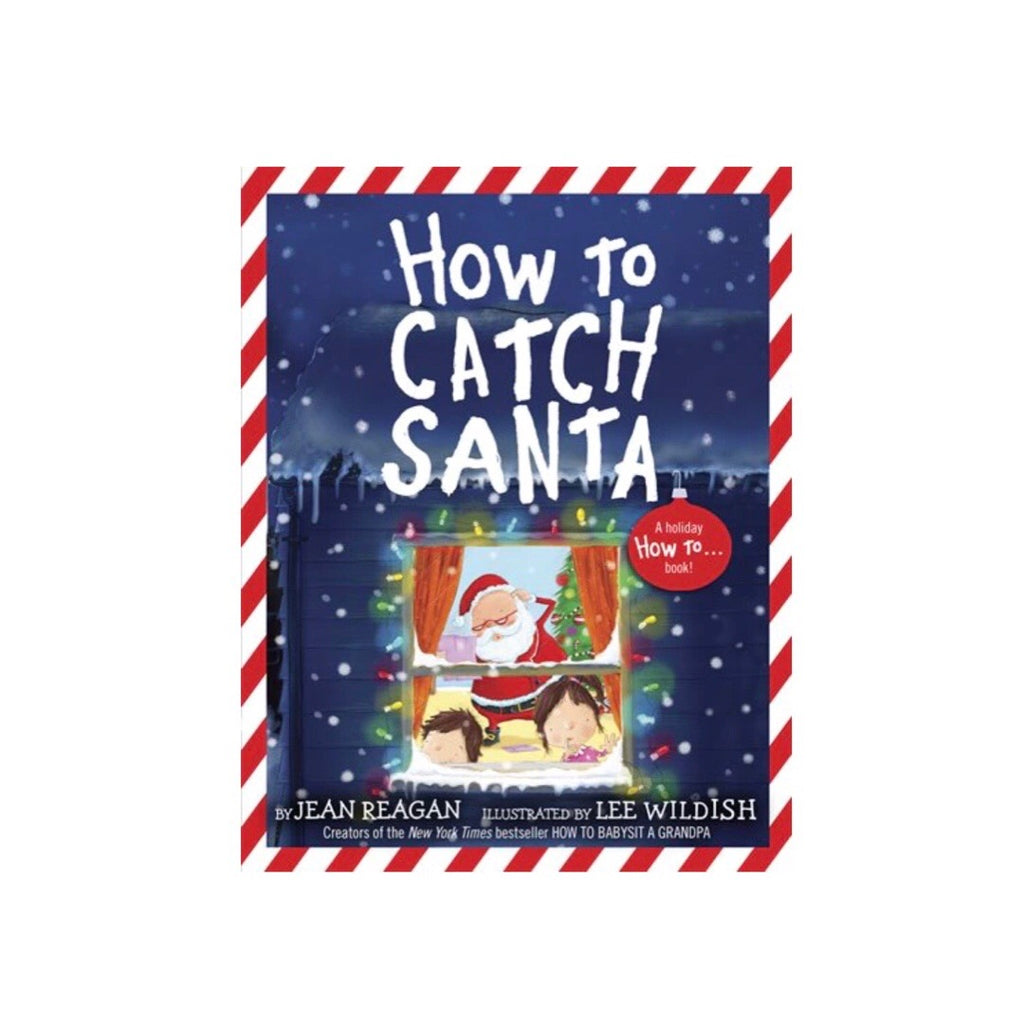 how to catch santa by jean reagan illustrated by lee wildish brandon manitoba