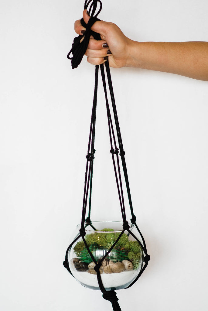 Hanging Terrarium Kit