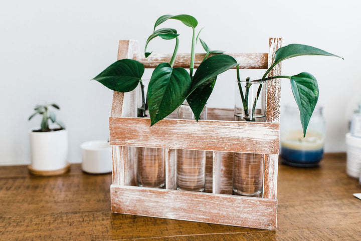 Adults & Crafts sample craft: weathered wood caddy.