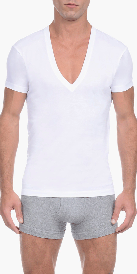 2(x)ist 3104104101 Pima Cotton Slim Fit Deep V-neck T-shirt white