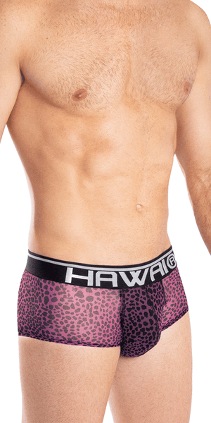 Hawai 42053 Assorted Colors Mini Trunks Magenta