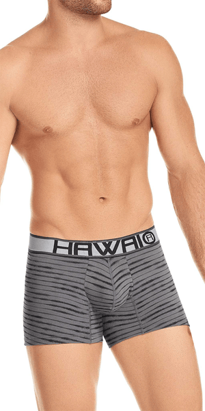 Hawai 41972 Boxer Briefs Gray