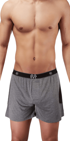 Male Power Bamboo Boxer Short In Gray