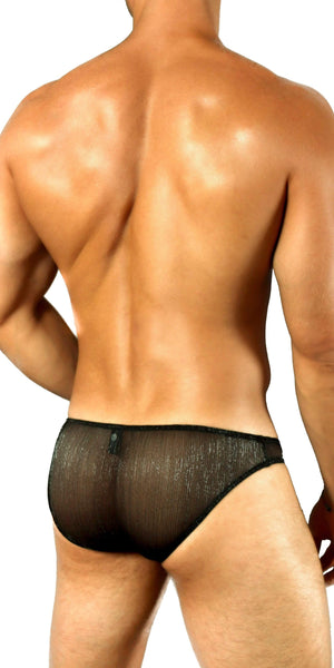 DOREANSE Shimmering Sheer Brief in Iridescent Black