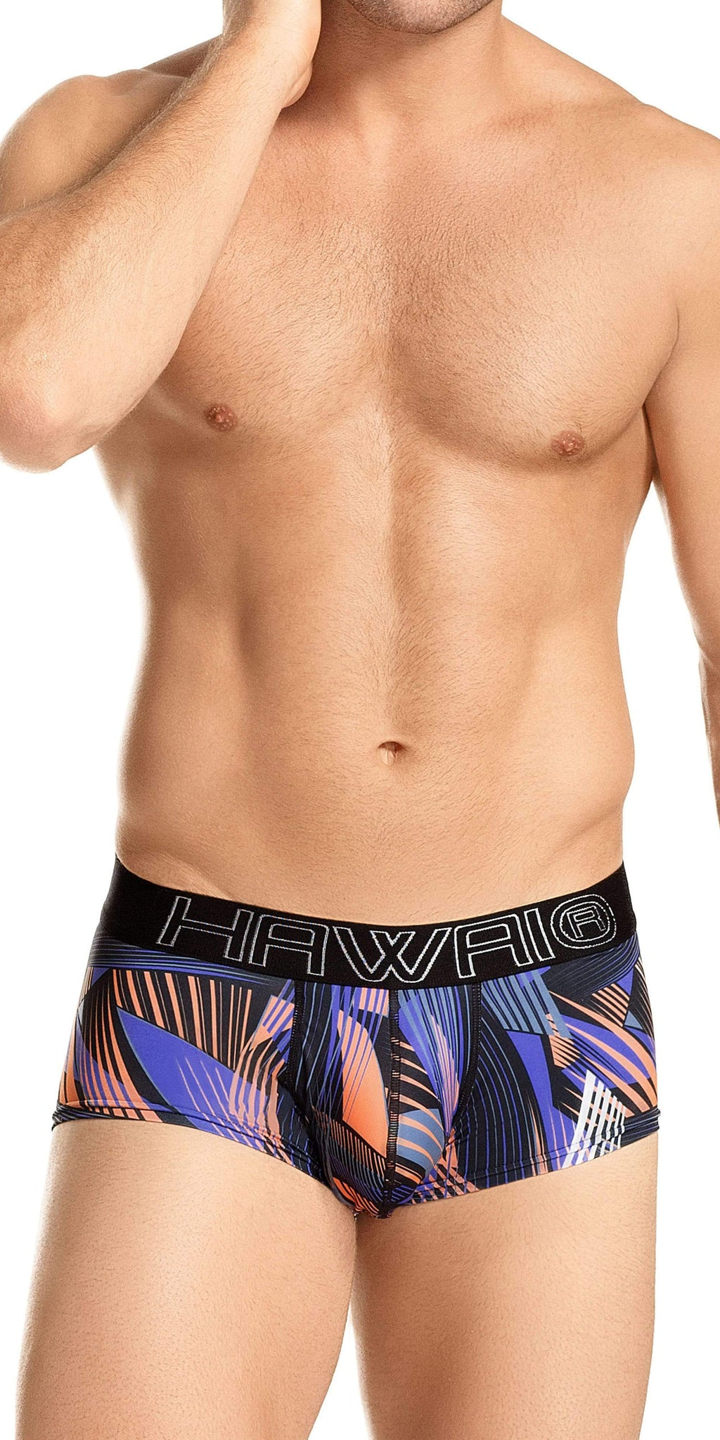 HAWAI Full Cut Brief In Purple