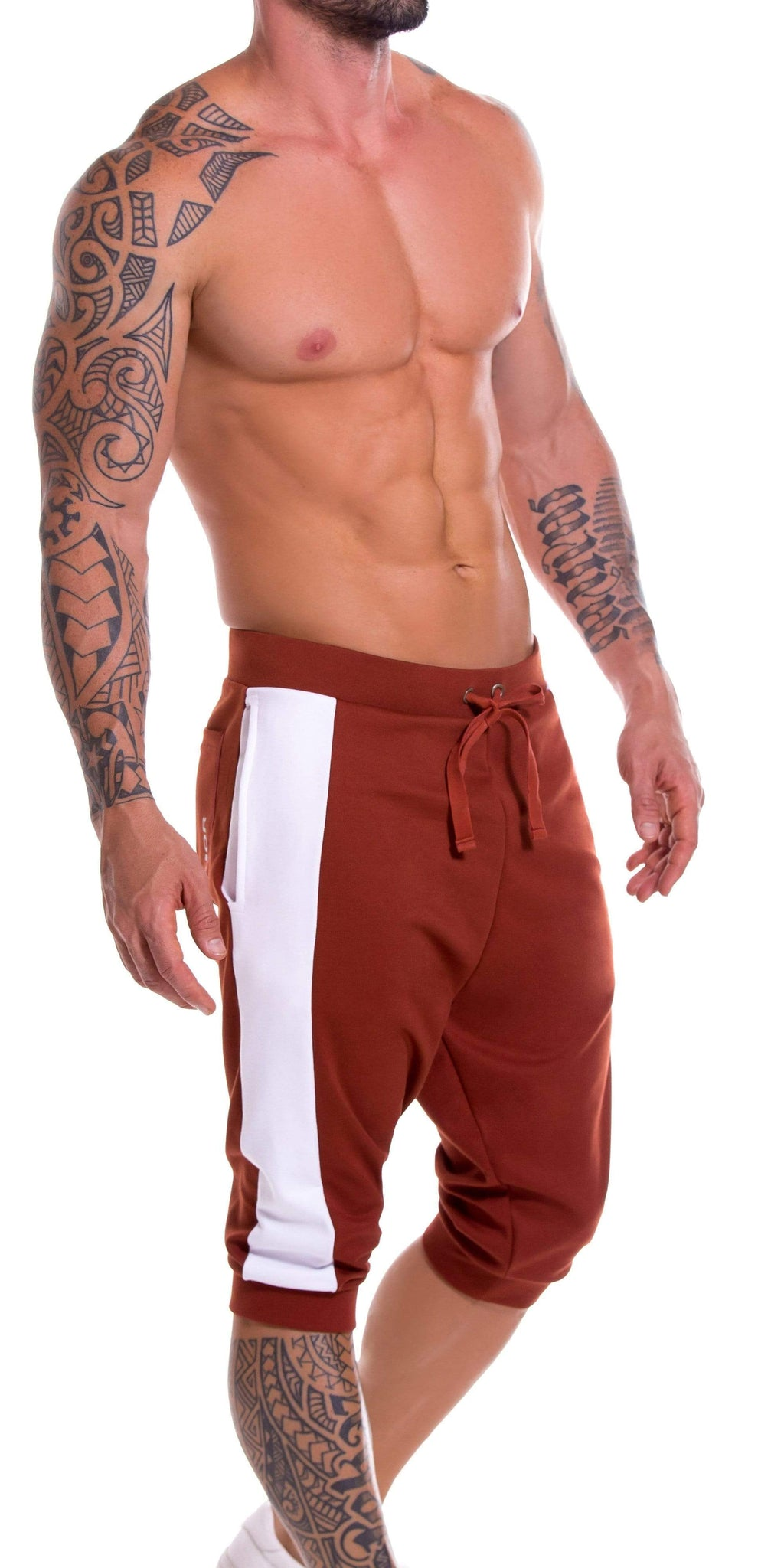 JOR Milan Athletic Cropped Pant In Terracotta