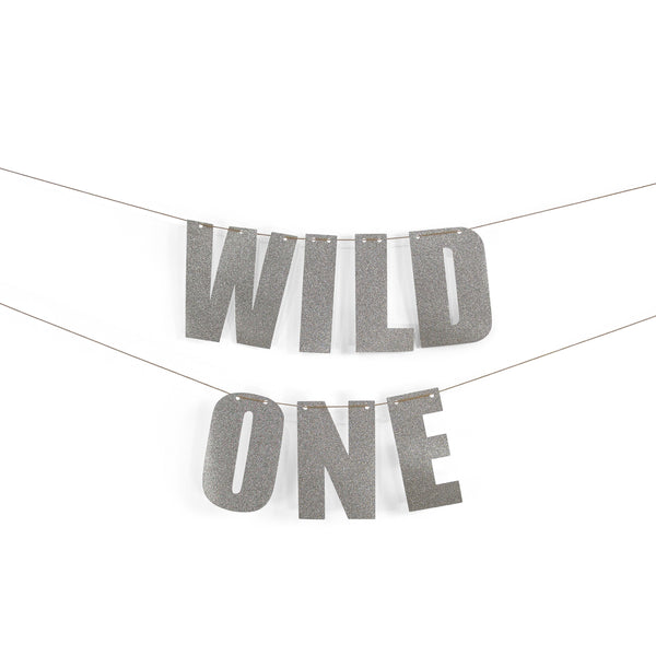 "Silver ""WILD ONE"" Glitter Banner, First Birthday Decor, Smash Cake Prop, Bachelorette Party, Silver Baby Shower Decor, Silver Custom Banner"