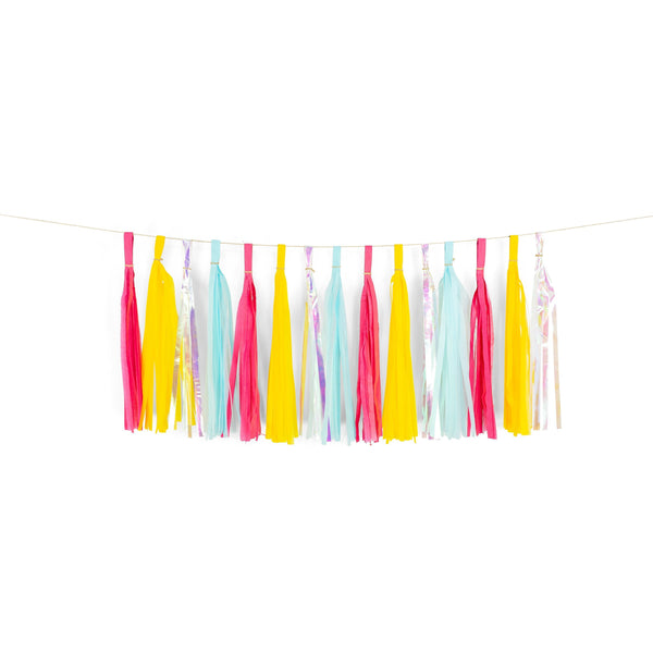 "SHIPS FREE** 15+ Tassel Garland - Pink Yellow Blue Iridescent Tassels- ""Disney Princess Squad"" Tassel Banner - Backdrop, DIY Party Decor"