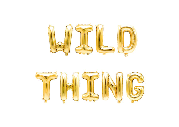 Wild Thing Balloon Banner, , Jamboree