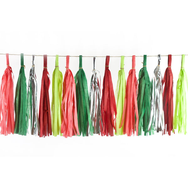 Dr. Seuss Christmas Tassels, Tassel Garlands, Jamboree Party Box, Jamboree