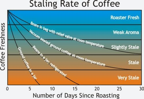 Coffee Freshness over Time
